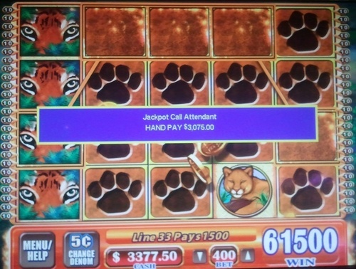 Hot Hot super re-spin feature on WMS gaming slot tigers realm pays 3075$ with 20$ bet!