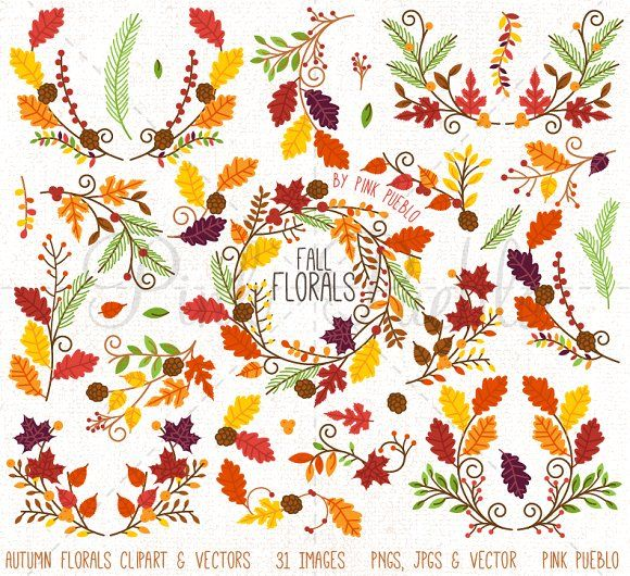 Thanksgiving Flower Clipart Vectors by PinkPueblo on @creativemarket