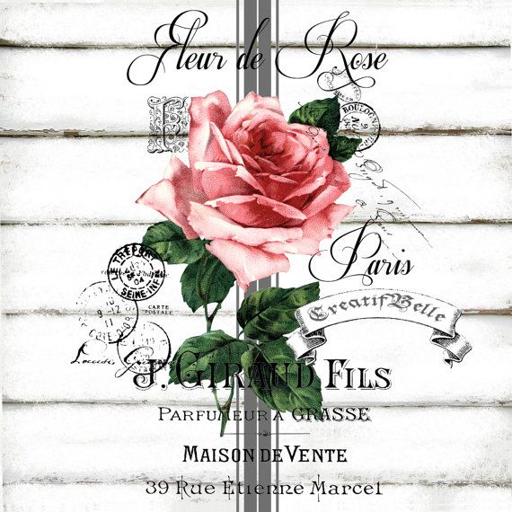 French Vintage Fleur de Rose Large A4 Instant by CreatifBelle