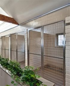 An idea for a Pet Resort Ranch ....Rooms/ kennels where boarders enjoy soothing music, full spectrum lighting, windows in every room, live plants and pet-friendly anti-bacterial floors.