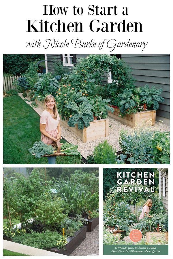 ef1c50da1633c8d4530a2bb64688f5bf - What Are The Basic Gardening Techniques