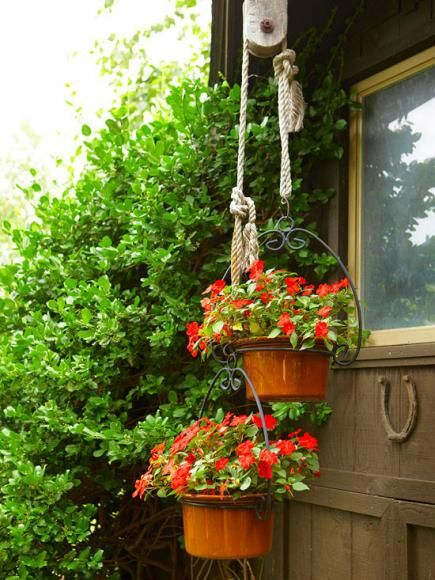 17 Best Images About Plant Pulley Ideas On Pinterest
