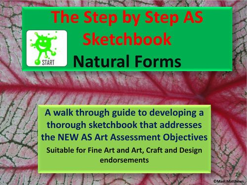 A level Art Resource. The Step by Step Guide to Developing a Thorough A level Art Sketchbook