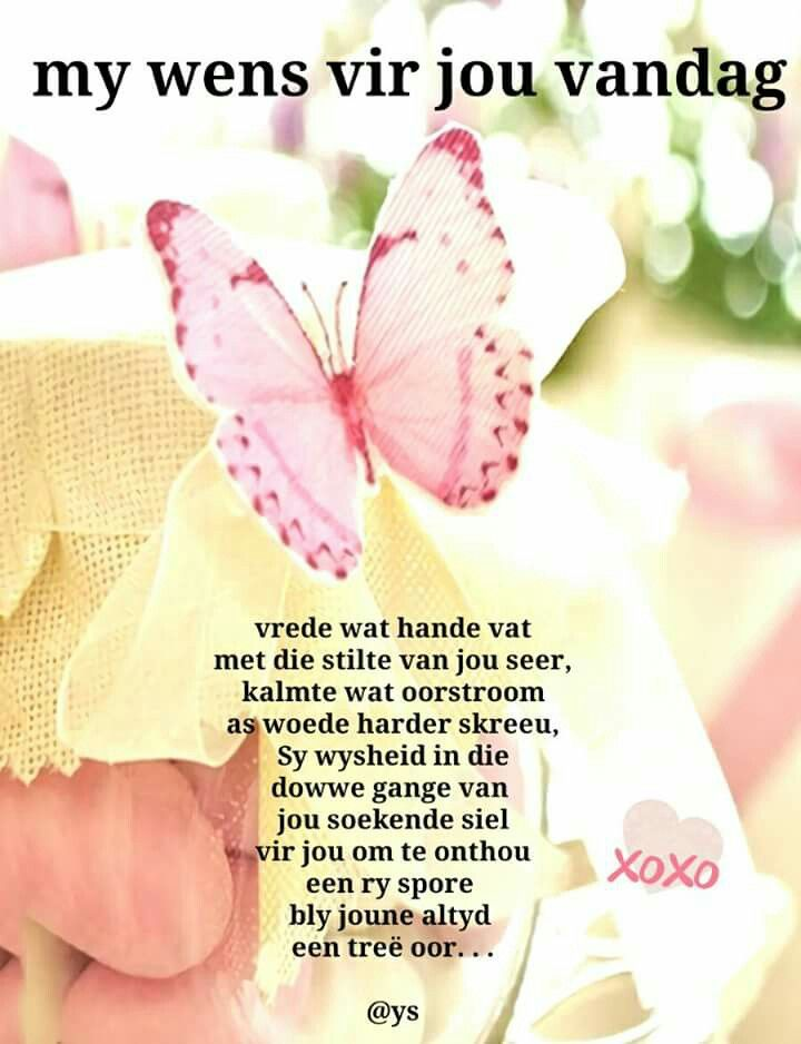 Afrikaans Mornings Free Spirit Prayer Eid Prayers Request