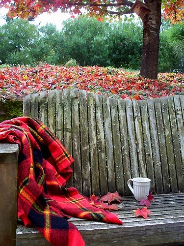 leaves falling, quaint bench, cozy plaid throw and a hot cuppa, the pleasure's of fall.