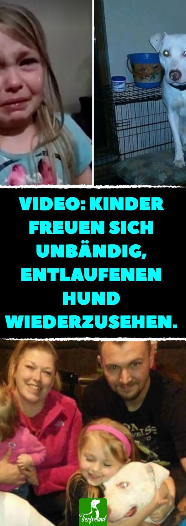 Video Suchen