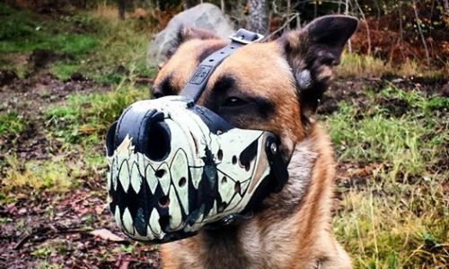 Working Dog Dry Goods Muzzle