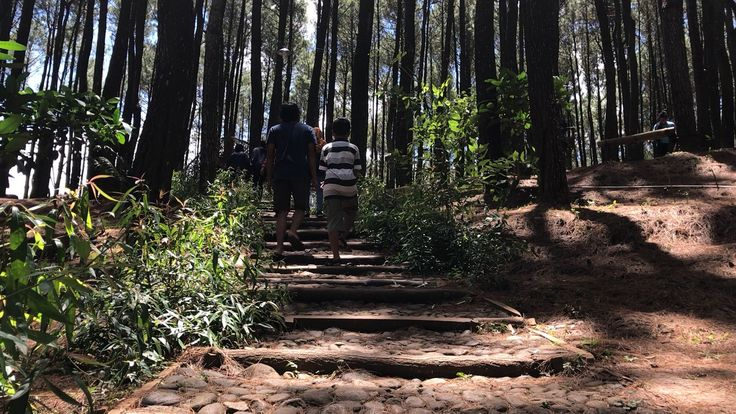 Start to climb Puncak Pengger