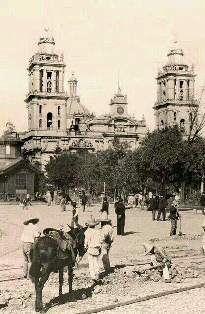 La Catedral Y La Plaza De La Constitución, Ciudad De