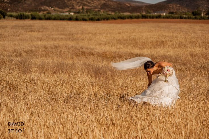 Bride in the outdoors field of Baja California -Viñedo La Joya