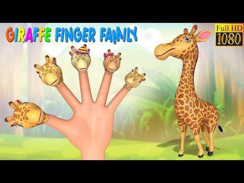 Rajendhira Prasadh: Giraffe Finger Family Rhyme | Finger Family Rhymes...