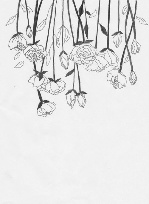Line Art Flower Tumblr : Best flower line drawings ideas on pinterest