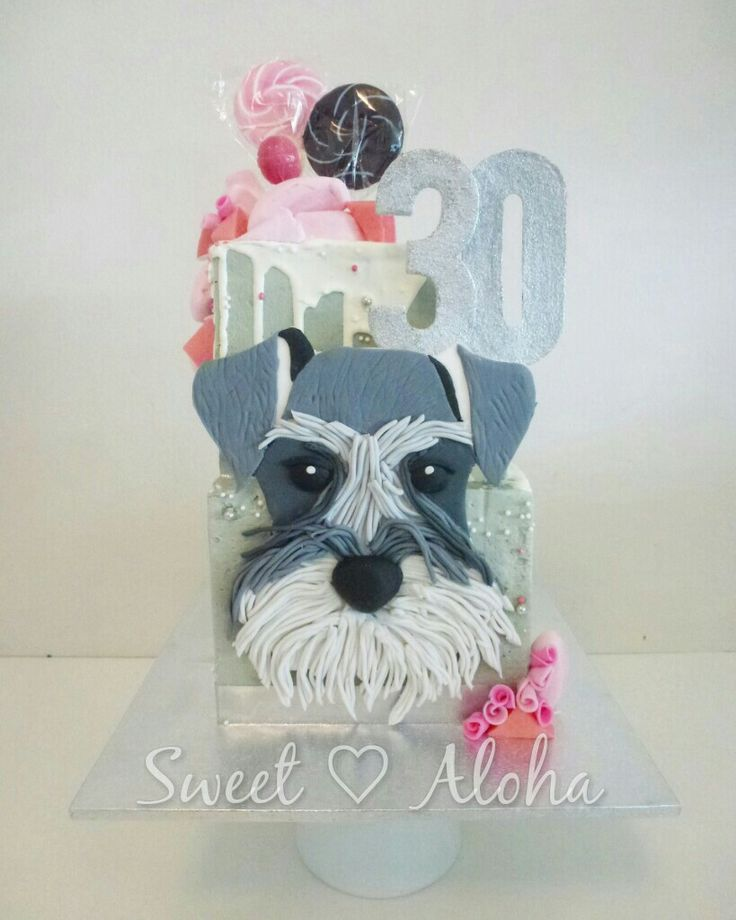 Square schnauzer puppy cake with drip and lollies