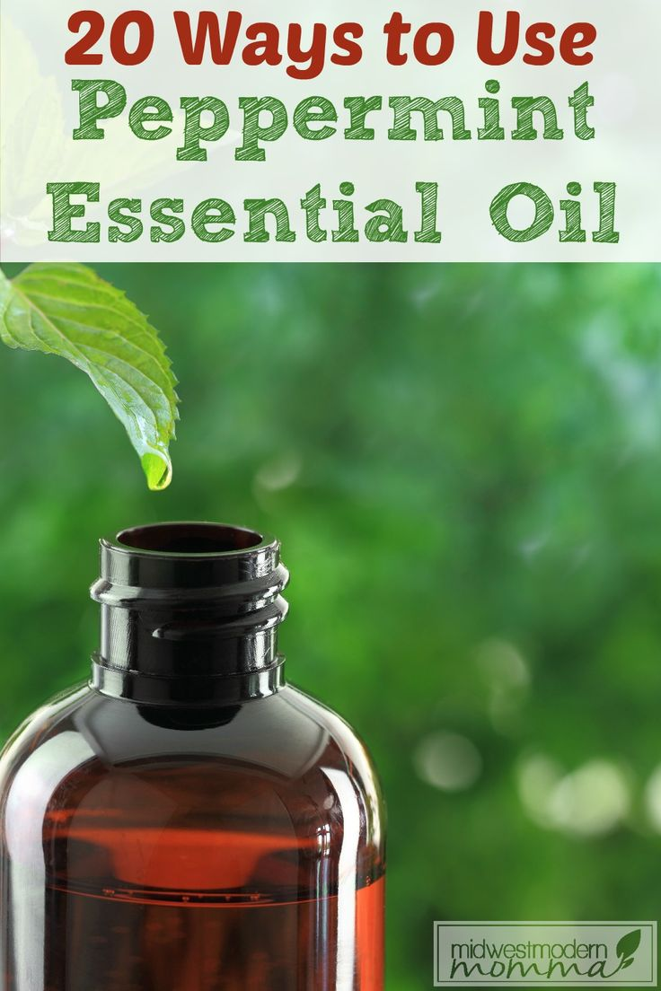 Whether you are looking for a quick headache remedy, wanting to make the house smell like the holidays, spot an itch, or do a fun activity with the kids, Peppermint Essential Oil is a must-have! These 20 uses for Peppermint Essential Oil are sure to surprise you.