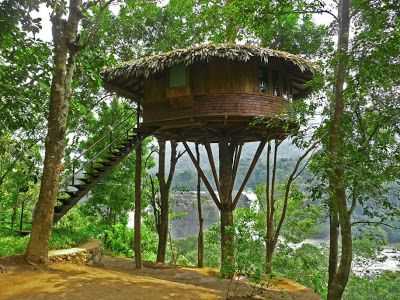Simple Tree Houses 500 best tree houses images on pinterest | treehouses, treehouse