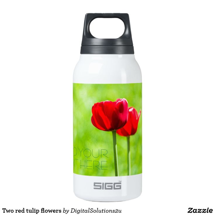 Two red tulip flowers insulated water bottle