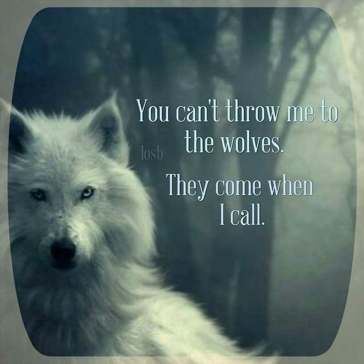Tattoo Quotes Wolf: Pin By Crystal White On Tattoos