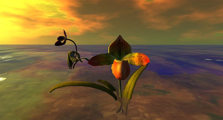https://flic.kr/p/ZCDrEU | The Orchids of Binemust-0005 | Binemust, by Bine Rodenberg maps.secondlife.com/secondlife/Binemust/132/156/717