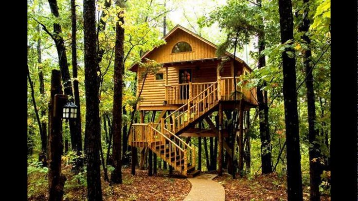tree house interior tree house plans kids tree houses best building t