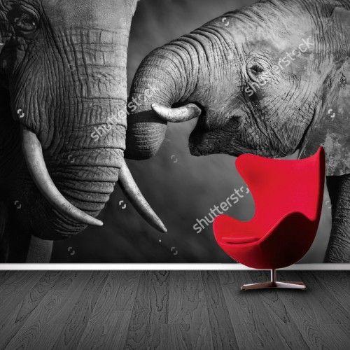 Fotobehang Olifanten close up (zwartwit) | Maak het jezelf eenvoudig en bestel fotobehang voorzien van een lijmlaag bij YouPri om zo gemakkelijk jouw woonruimte een nieuwe stijl te geven. Voor het behangen heb je alleen water nodig!   #behang #fotobehang #print #opdruk #afbeelding #diy #behangen #olifanten #olifant #zwartwit #afrika