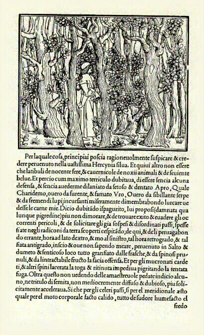 The Hypnerotomachia Poliphili is a fascinating book. It was first produced by renowned Venetian publisher Aldus Manutius (ca. 1450-1515) in 1499. A specialist in the publication of Greek and Latin texts, Aldus was also famous for developing new formats, such as the small, handheld book, and for typographical innovation: he intruduced, for example, the use of printed italics. The typeface used in the Hypnerotomachia was designed specifically for the book, and drew from classical manuscripts…