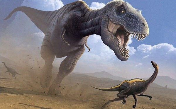 Dinosaurios superdepredadores, documental online de estos super animales que vivieron en nuestro planeta y todavia hoy en dia son un misterio para ciencia.