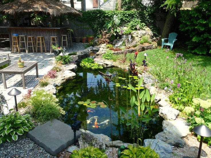 Charmant Ecosystem Pond   Backyard Fish Pond   Contact Us Today At 516 937 FISH