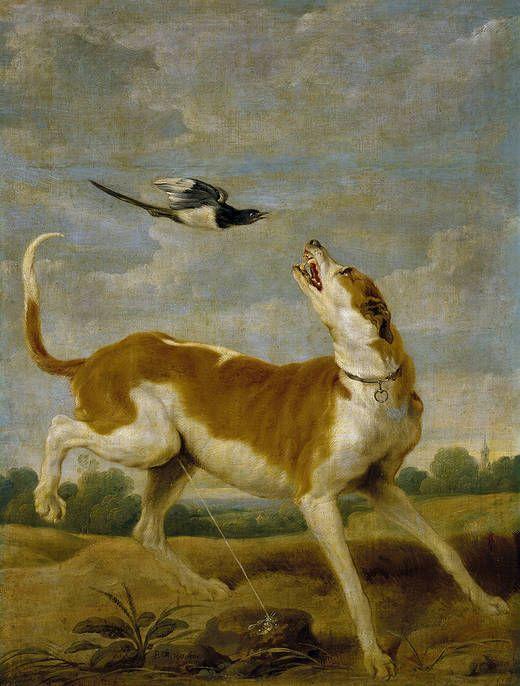 """""""El perro y la picaza"""", Paul de Vos. Óleo sobre lienzo, siglo XVII"""