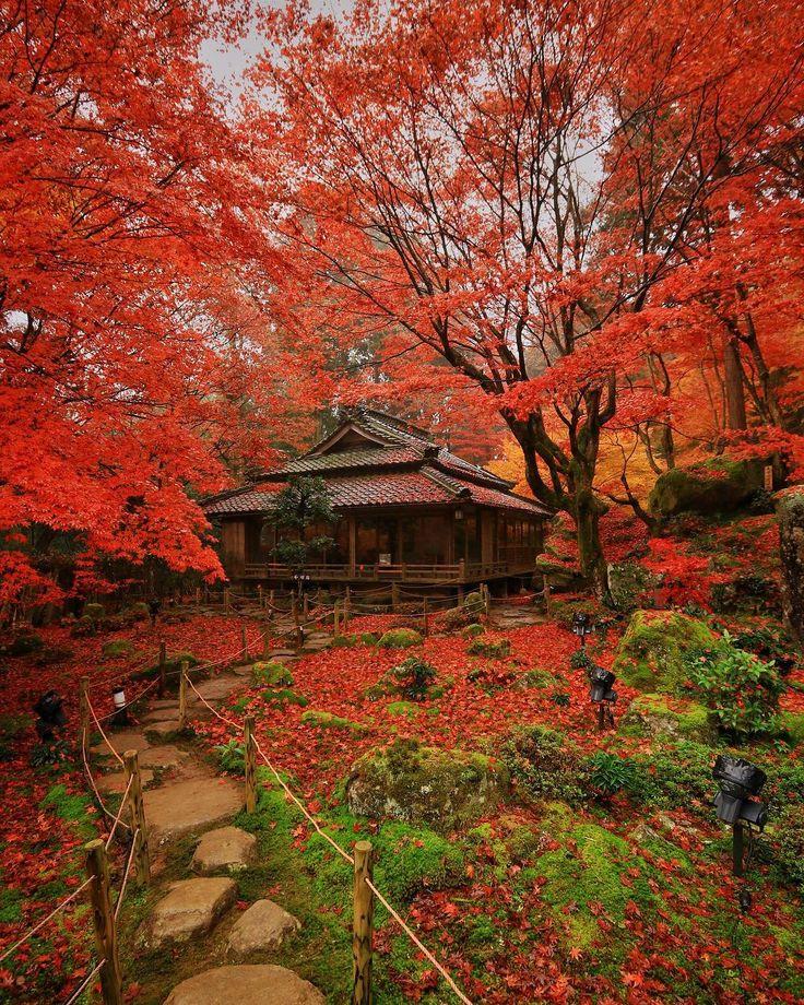 Kyourinbo, Omihachiman, Shiga, Japan, 教林坊, 近江八幡, 滋賀, 日本, temple. autumn