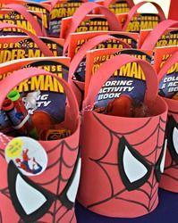 """Spiderman / Birthday """"Spider Man""""   Catch My Party"""