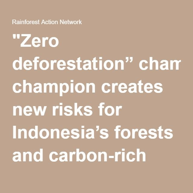 """Zero deforestation"" champion creates new risks for Indonesia's forests and carbon-rich peatlands with mega-scale pulp mill - Rainforest Action Network"