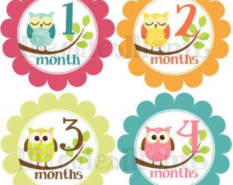 Mensual pegatinas de bebé bebé niña mes pegatinas por MaddiesMomE