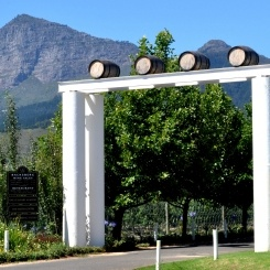 Backsberg  Backsberg Estate Cellars is the only Carbon Neutral Wine Estate in South Africa. Michael Back is affectionately known as the 'Environmental Nut' and inspires us all to live greener.    Backsberg is a Tread Gently Nominee in the #KILNK awards