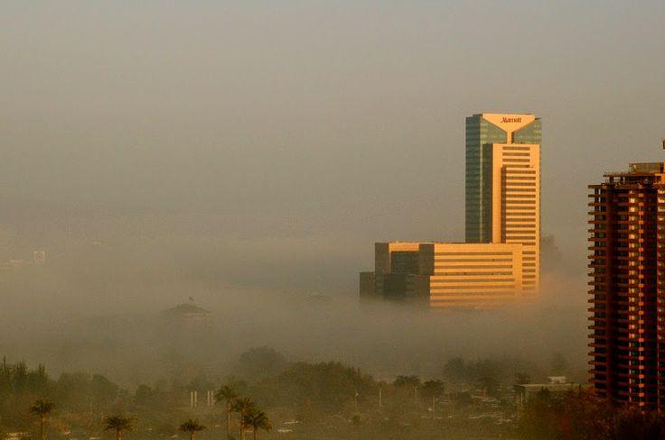 ¿Cuáles son los principales elementos presentes en la contaminación del aire? AIRLIFE te responde. Son: la lluvia acida, el monóxido de carbono, los gases producidos por la quema de combustibles fósiles y el ozono troposférico.
