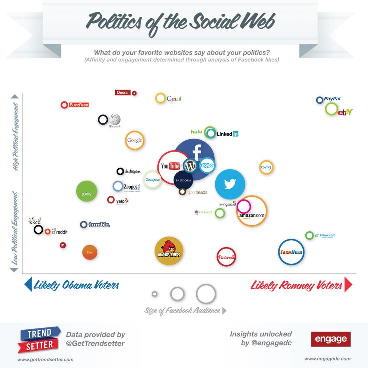 The Politics of the Social Web #INFOGRAPHIC