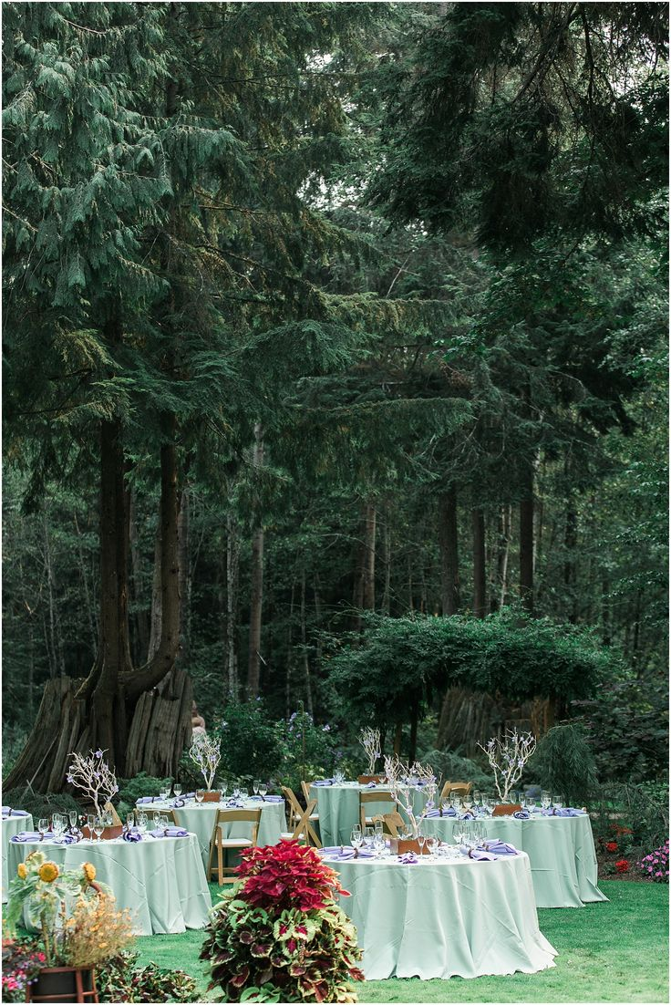 51 best whimsical vegan garden wedding at glen echo garden for Outdoor wedding washington state