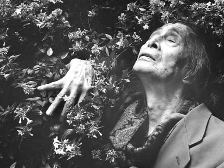Sesc Consolação recebe exposição de Eikoh Hosoe, fotógrafo japonês que retrata em seu trabalho a morte, o erotismo e a irracionalidade