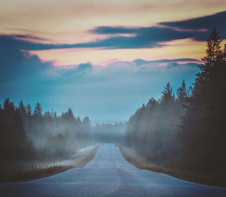 Photo by Jani Ylinampa Instagram #rovaniemi #lapland #finland #lappi #suomi #road #visitlapland #visitrovaniemi #chasingfog #mist_vision #welivetoexplore #mist_bestshots #rsa_light #tv_foggy #moodygrams #discoverfinland #mist #natgeo #igscandinavia #ig_fogaholics #mistyfoggy #visual_magic #letsgosomewhere #fog #kings_shots #igmasters #scandinavia #excellent_nordic #dream_image #magichour