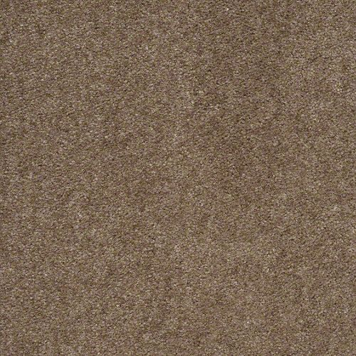 Temp Carpeting Baseline By Builder Flooring For The