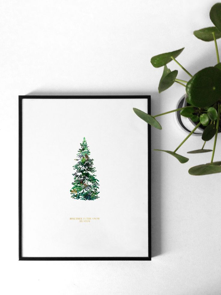 Pine tree in the snow by Støy