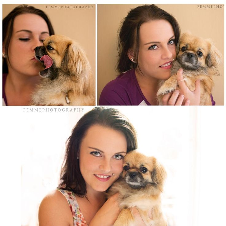 Look at this #cute #dog and owner ! #photoshop #collage pic.twitter.com/uLno52HDcy