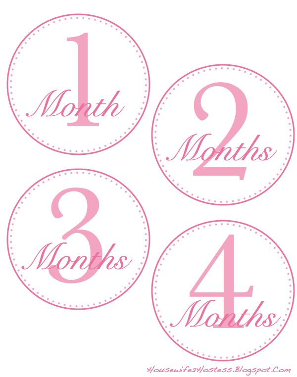 Free 12 Days Of Christmas Number Recognition Worksheet: FREE 12 Months Onesies Template BOY/GIRL