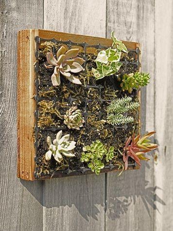 Best 25 Vertical Wall Planters Ideas On Pinterest Wall