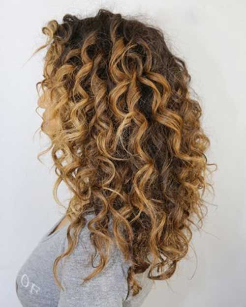 Curly Brown Hair With Blonde Highlights Hair Color Ideas And