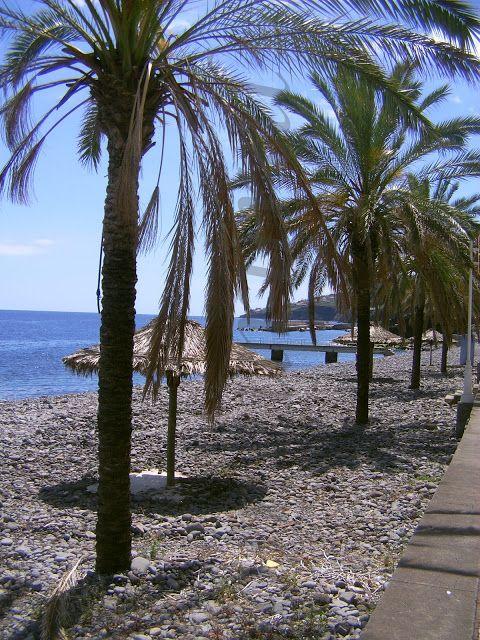 ______AvoGi (e as Pulgas)_____: Podia ser o Havai mas é Santa Cruz, ilha da Madeir...