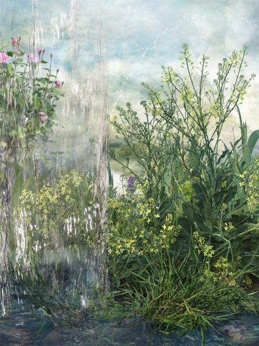 Fotografía nº 4 de la serie 'Alegría en el jardín'. 2011