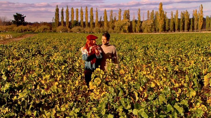 Quebec wine route