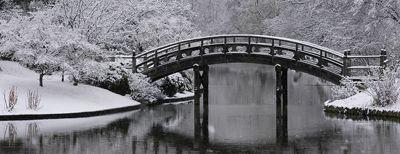 Missouri Botanical Garden, St. Louis, MO:  View of  Drum bridge in the Japenese Garden.