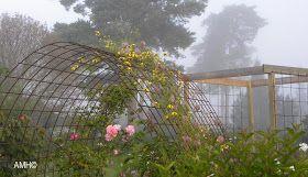 Med en rosenträdgård fylld av klätterrosor behövs en del klätterstöd.Denna rosenbåge är det en god vän som tillverkat till oss för säkert 15...