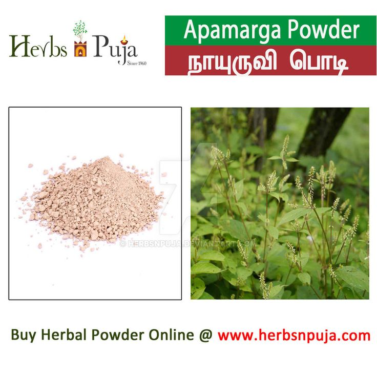 Apamarga Powder by Herbsnpuja on DeviantArt